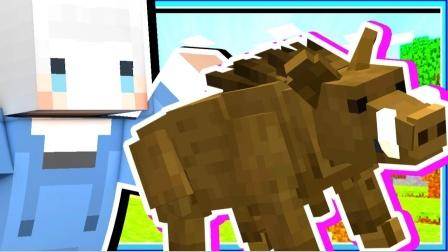 我的世界小白解说矿蜂物语07 野猪骑士来了被野猪撞的迷迷糊糊