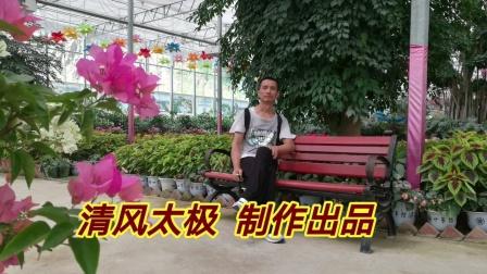 佛系  传统杨式八十五式太极拳 全视频动作配字幕  教学版 步步清风演示上传