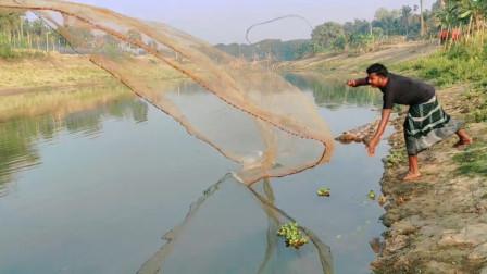 农村父子河边捕鱼,小河边撒了一网,果然捕捞到大鲫鱼