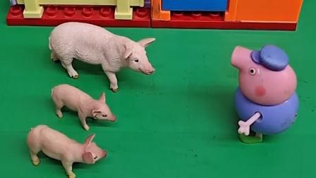猪爷爷打开门,小猪一家都跟着回家了,他们家小猪猪也回家了