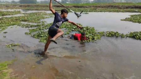 河边果然有大鱼,飞扑一叉,农村兄弟又抓了一条野货