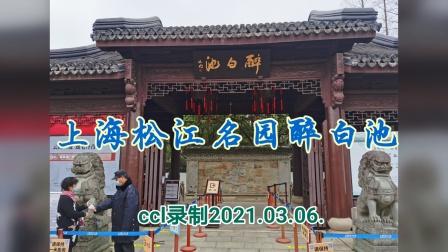 上海松江名园醉白池