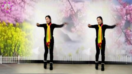 广场舞《伤不起》简单32步(1)