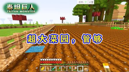 我的世界泰坦巨人27:建一个菜园!有连锁采集,种地变得很轻松