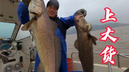 今天出海放排钩,1500枚钩下海又遇米级巨物,这鱼的叫声你听过吗
