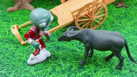 牛先生找不到猪爷爷了,僵尸准备骗走他,结果牛先生根本就不上当