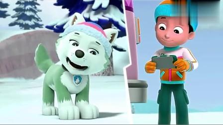 儿童早教动画,汪汪队出发清理道路上的雪!