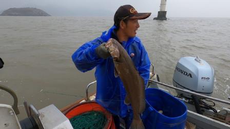 阿杰冒雨赶海下排钩,4500米的排钩扔下海,这鱼货是要破纪录啊