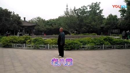 老八掌(程式)——刘志平(精平)