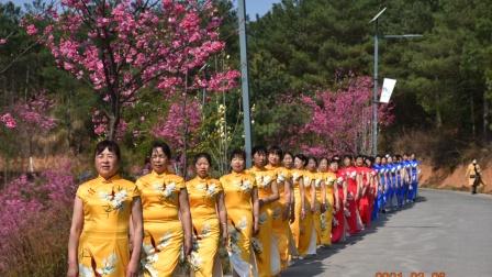 舞蹈分会3.8妇女节游樱花谷
