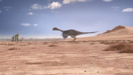 现在家禽祖先可不简单,曾和恐龙同一时代,说不定还是一方霸主!