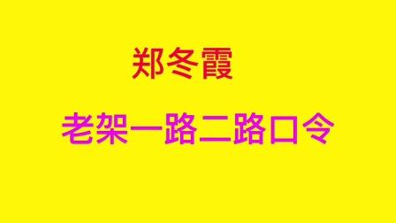 郑冬霞老架一路二路口令教学