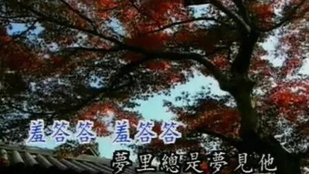 背景音乐  邓丽君MTV  山茶花