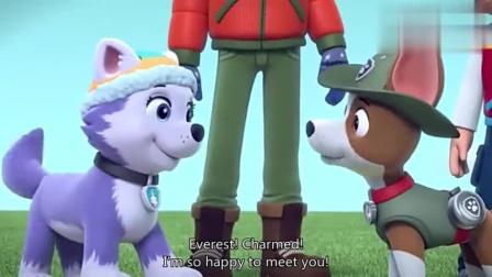 汪汪队:小克以为泡沫是雪,忍不住跳进去,变身白胡子狗狗