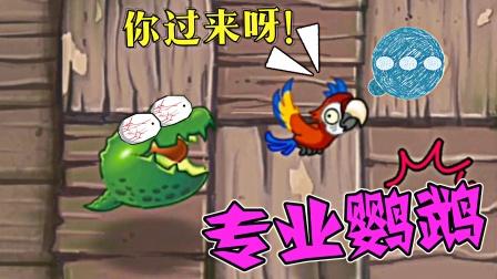 Pvz2:小鹦鹉能有什么坏心思,只是想回到主人身边而已!
