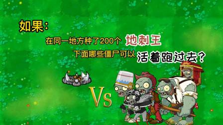 植物大战僵尸:挑战在同一个地方种了200个地刺,僵尸能过去吗?