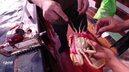 2斤重的大螃蟹做鱼饵钓鱼,过一会,船工和钓友都着急了