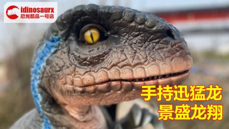 手持操控型迅猛龙木偶 - 真人操作的小恐龙模型