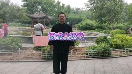 杨式太极拳——高新杰