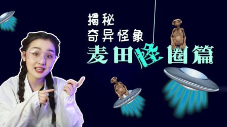 破解麦田怪圈之谜!冯绍峰还亲自做过!只需两步教你做麦田怪圈!