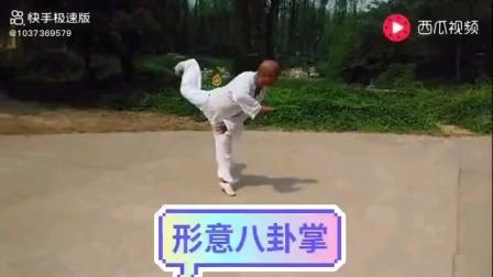 """形意八卦""""八大掌""""——刘志平(精平)"""