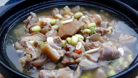 羊肉学会如此炖,不骚不硬,滋补养胃,天冷了给家人进进补吧