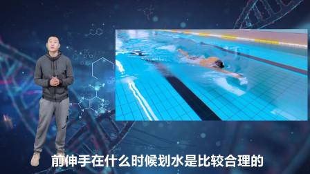 中游体育:游自由泳时前伸手什么时机开始划水更合理