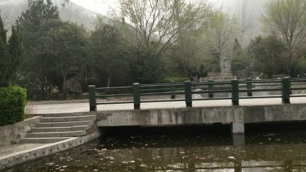 山西省运城市凤凰谷的水池4