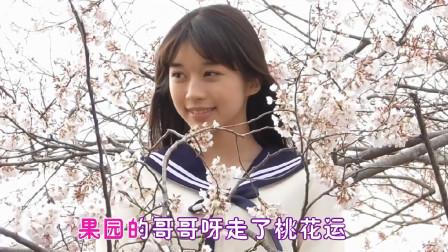 杨钰莹《桃花运》送给你,歌曲浪漫好听,比初恋还甜!
