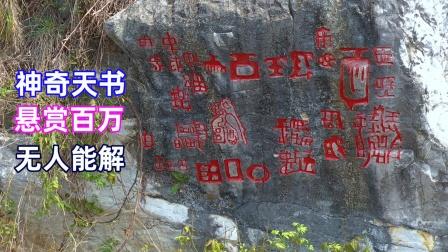 贵州大山悬崖发现神奇天书,曾悬赏百万,却无人能解
