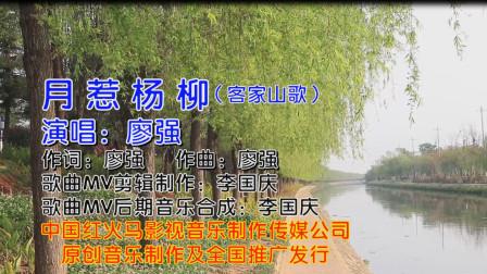 月惹杨柳(客家山歌KTV版)广东著名客家歌手:廖强 演唱 歌曲MV制作:李国庆