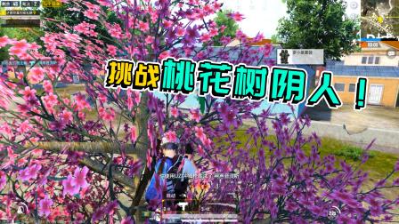 鸡大宝:挑战春节模式桃花树上阴人,敌人化身小聋瞎惨遭安排