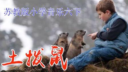 苏教版小学音乐六年级下册《土拨鼠》