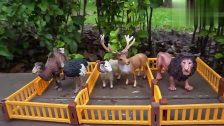 益智玩具:运输汽车来运输狮子、老虎、还有鸵鸟等动物,给小动物喂食物