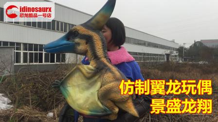 仿制的侏罗纪翼龙道具 - 手操控的小飞龙幼崽模型
