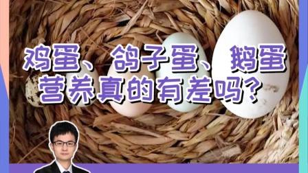 鸵鸟蛋、鹅蛋比鸡蛋营养更好吗?#鸡蛋 #营养 #丁香医生