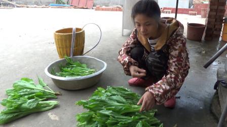 农村吃不完的青菜,摘回来做成酸菜和呛菜,好吃方便,又轻易保存