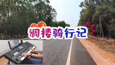 调楼骑行记+《爱的故事》电子琴配乐