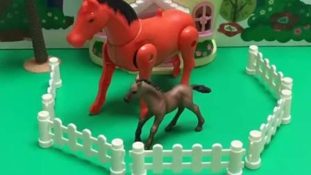 玩具乐园:猪爷爷给我们什么?