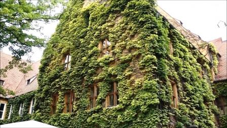 国外500年没涨房租的地区,60平的房子6块人民币的租金,年租!