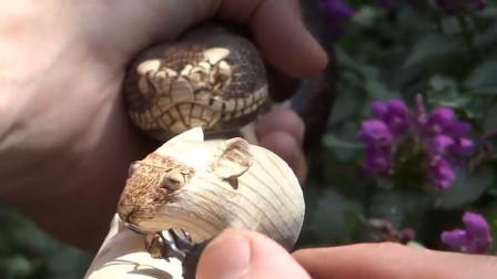 外国大爷捡根木头雕蛇捉老鼠拐杖,这精湛的手艺,不知收徒不!