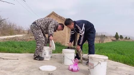 农村小伙从丈母娘家回来,第一天就下地干活,这的环境和湖北比如何