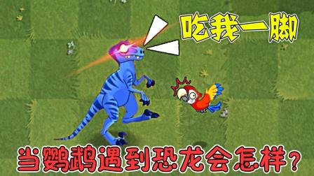 植物大战僵尸2:当鹦鹉遇到恐龙,会怎样呢?