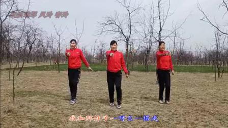 大荔凤玲广场舞DJ《红盖头》全网首发原创含教学