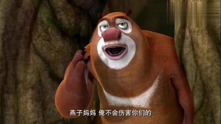 熊出没:熊大救了燕子们, 肥波嫁祸他们, 告诉了光头强!