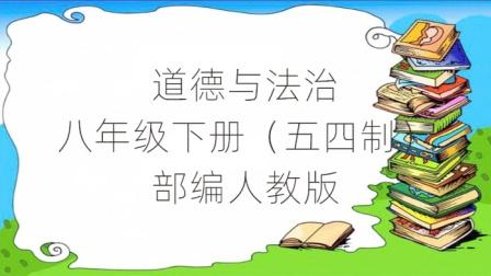 初中道德与法治(部编版)人教版八年级下册(五四制)课堂视频