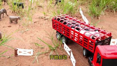 大卡车拉农场动物,小拖车到田野了拉青草