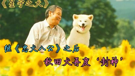 一部温情宠物电影,狗狗想找点食物给主人吃,人们却把它打成重伤