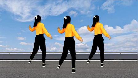 广场舞《野花香》歌好听,舞好看,欢迎欣赏