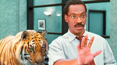 小伙从小能和动物说话,长大当了医生后,连老虎都求他治病!